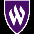 webwer-icon1